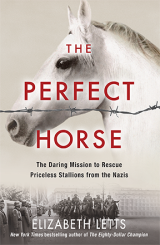 The-Perfect-Horse